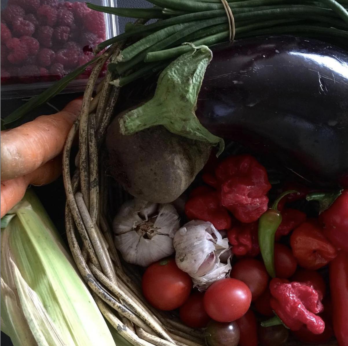Tanbella vegetables